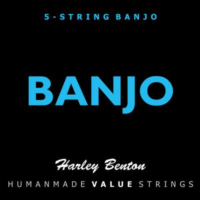 Harley Benton Valuestrings 5-String Banjo